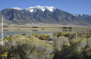 Mount Nebo & Mona Reservoir (Land O' Goshen & Nebo routes)