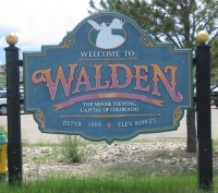 Walden, the moose viewing capital of Colo.